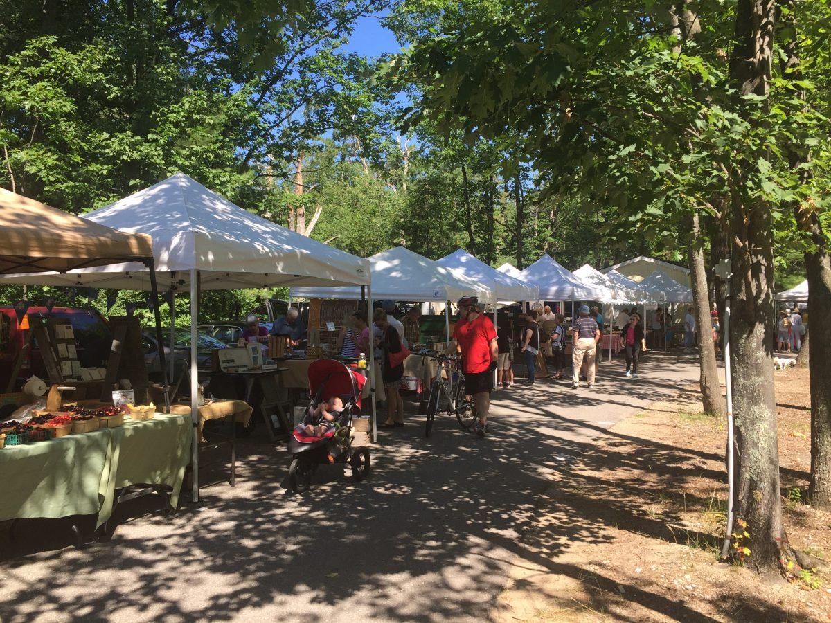 people shopping farmer's market